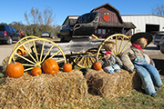 LHHB Greene Deals Orchard store buggy 10-5-10 photo by Carol